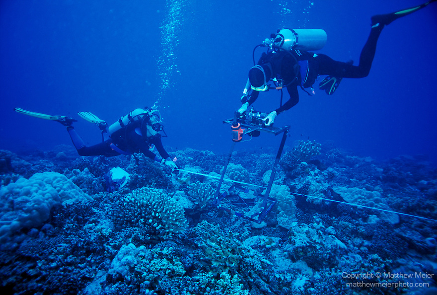 LTER 2, Moorea, French Polynesia; coral researcher, Peter Edmunds photographing corals with graduate assistant, Mairead 'Mai' Maheigan, as part of the LTER (Long Term Ecological Research) Project , Copyright © Matthew Meier, matthewmeierphoto.com All Rights Reserved