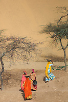 Women working at the base of a giant Sand dune, near Jaisalmer 100 KM from the Pakistan Border, Rajasthan India