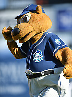 Asheville Tourists mascot Ted E Tourists (00) during a game against the Hagerstown Suns  at McCormick Field on May 13, 2017 in Asheville, North Carolina. The Suns defeated the Tourists 9-5. (Tony Farlow/Four Seam Images)