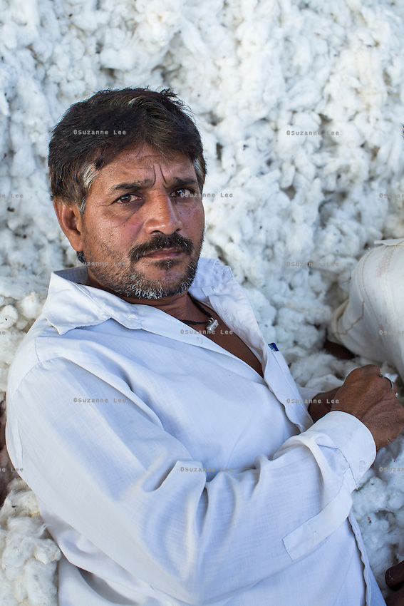 Weighing worker Cheran Verma takes a rest in the mountain of raw Fairtrade cotton at a ginning factory that is contracted by Pratibha in Karhi, Khargone, Madhya Pradesh, India on 12 November 2014. Photo by Suzanne Lee for Fairtrade