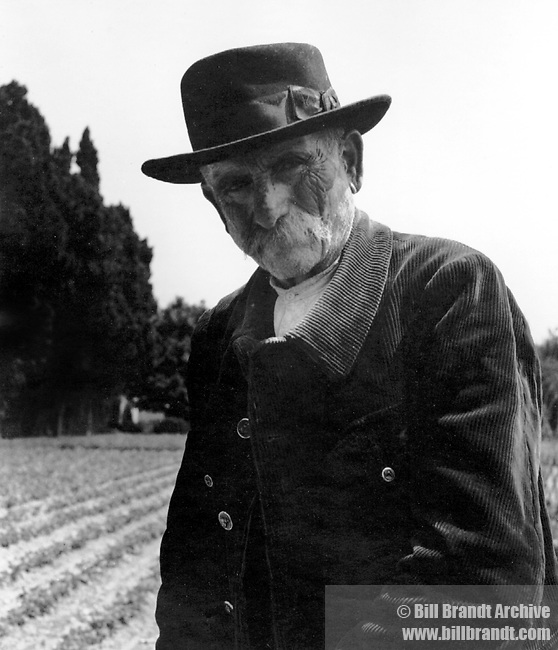 Provencal farmer Van Gogh's provence