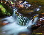 Long exposure shot of water flowing over a rock in a stream near the Little Greenbriar Schoolhouse, Great Smoky Mountains National Park. Smoky Mountain photos by Gordon and Jan Brugman.