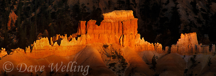 904000023 panorama dramatic light created by a small shaft of sunset light brightens a row of hoodoos in the silent city in bryce canyon national park utah