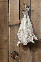 Bacalhau, or Portuguese dried and salted cod, hangs from a nail on the recycled wood wall covering of the living room cabin