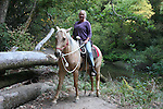 Horseback riding at Henry Cowell Redwoods State Park