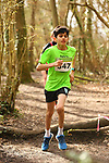 2017-03-18 Clandon Park 11 AB woods