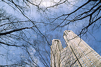 Tokyo Metropolitan Government Tower behind winter trees in Shinjuku, Tokyo, Japan. February 2005