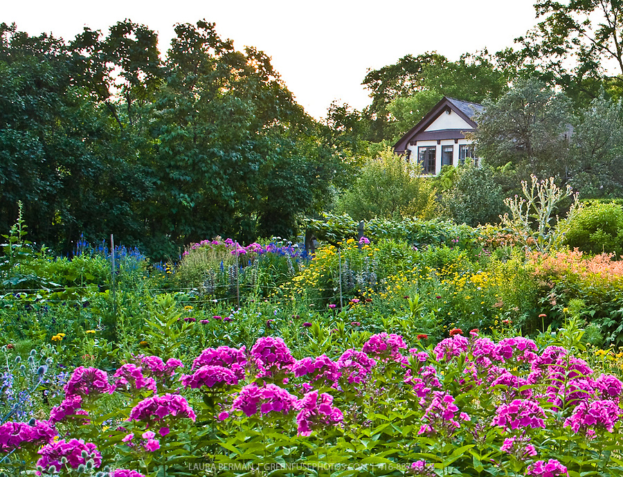 Lush, mid-summer perennial flower garden. | GreenFuse Photos ...