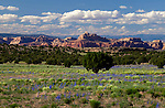 The scenic landscape near Moab, Utah, USA