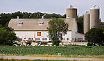 A collection of Barns that still can be seen while traveling the countryside in  the beautiful State of Wisconsin.<br /> Green County Barn Quilts-LaMoyne Star- Voegeli Farms, N7190 Hwy 69 Monticello, WI.
