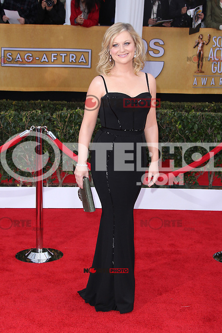 LOS ANGELES, CA - JANUARY 27: Amy Poehler at The 19th Annual Screen Actors Guild Awards at the Los Angeles Shrine Exposition Center in Los Angeles, California. January 27, 2013. Credit: MediaPunch Inc. /NortePhoto /NortePhoto