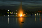 Ducks take a nightime swim in front of a lighted fountain in Riverstone Park, Coeur D Alene Idaho