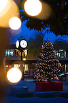 A Christmas tree glows brightly on the plaza located at First and Main Streets in preparation for the holidays.