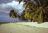 Sandy tropical beach in Trinidad-Tobago