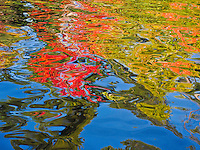 &quot;Nature's Finger-Painting&quot;<br />