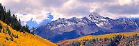 Aspen & Mt. Wilson, San Juan Mountains, Colorado