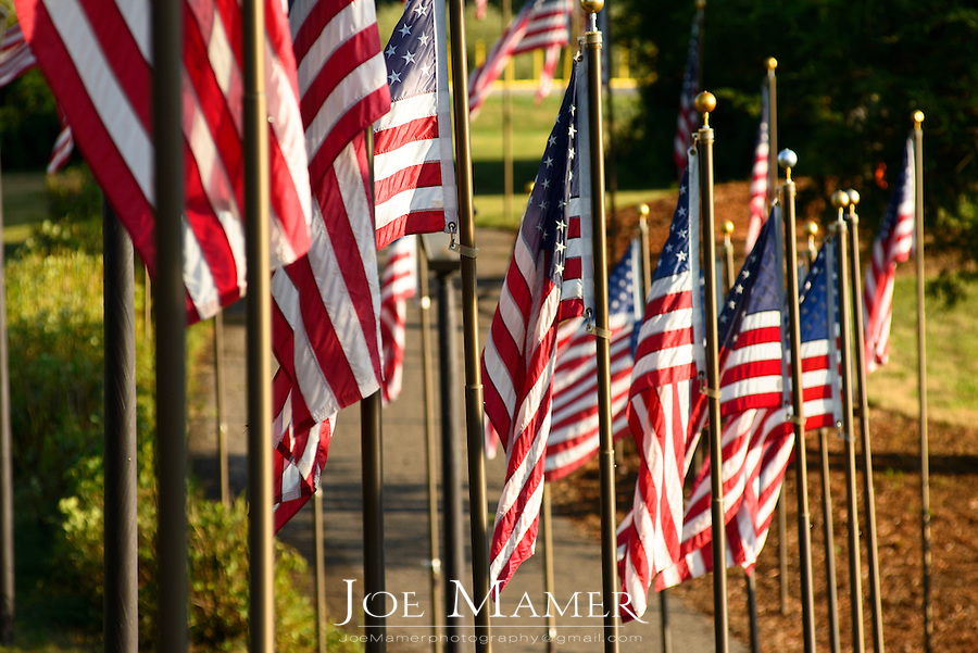 American flag display at Veterans Park.  Each pole is engraved with the name of one or more veterans both living and deceased.