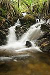 Small waterfall along the Kalalau Trail on the Na Pali Coast, Kauai, Hawaii