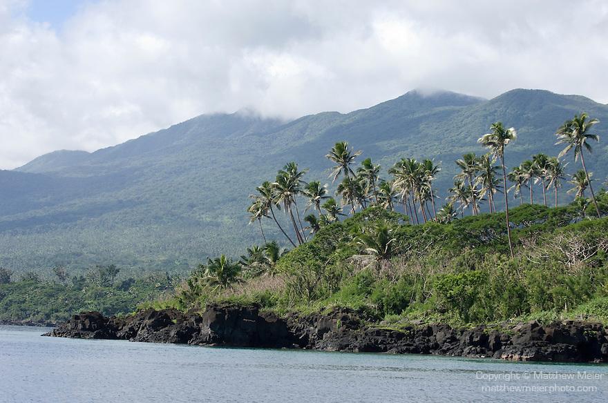 Taveuni, Fiji; coconut palm trees grow in groves above the black lava rocks along the shoreline of Taveuni Island