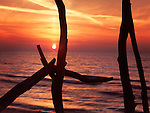 Colorful red sunset behind driftwood sculpture at lake Huron, Ontario, Canada.