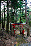 Photo shows the red torii gate marking the entrance to Asama Shrine in Nebara, Fujinomiya City, Shizuoka Prefecture Japan on 22 March 2013. Around 1,300 Asama shrines, also called Sengen Shrines reflecting a different reading of the Chinese characters used, were built around Mt Fuji and indeed throughout Japan in an attempt to appease the Gods thought to be the root of Mt Fuji's and other mountain's volcanic eruptions. Photographer: Robert Gilhooly