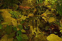 The Muttart Conservatory is spectacular during the day but these images captivate under the soft ambient night lighting too. The varying color filters employed by the atrium add interesting effects.
