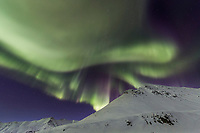 The aurora over the snow covered mountains of the Brooks Range in Atigun Pass, Arctic, Alaska.