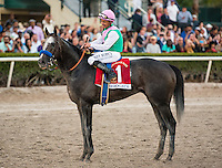 HALLANDALE BEACH, FL - JAN 28: Arrogate #1, ridden by Mike Smith, wins the $12,000,000 Pegasus World Cup Invitational the Pegasus World Cup Invitational Day at Gulfstream Park Race Course on January 28, 2017 in Hallandale Beach, Florida. (Photo by Samantha Bussanich/Eclipse Sportswire/Getty Images)