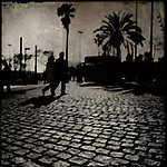 Silhouettes of two people walking on a cobbled street with palm trees