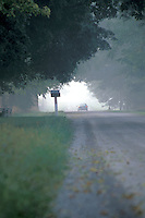 Misty Rural Route in the Morning