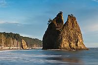 Sea stack at Rialto Beach, Oplymic national park, Washington, USA