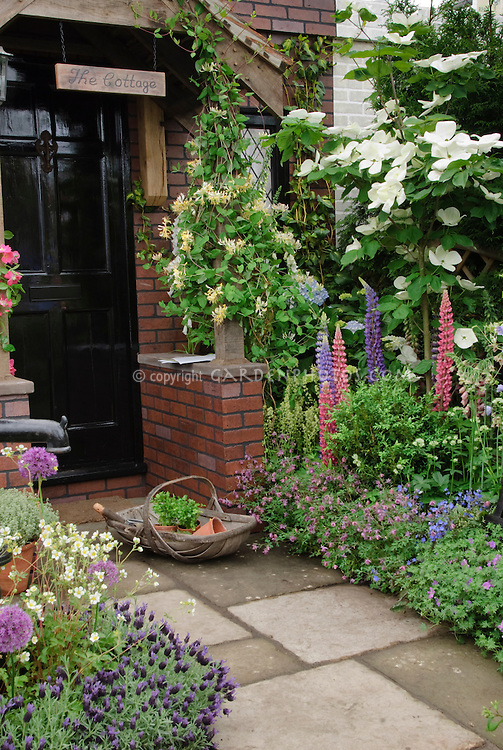 "Front entrance of old house with black door, stone walkway path, flower & herb garden, honeysuckle and clematis vines, trees, name sign of ""The Cottage"", trug of herb plants for inviting welcome, Flowering Dogwood Venus hybrid made from C. kousa × nuttalli x kousa"