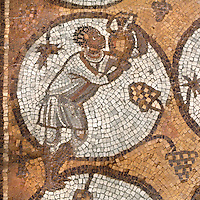 Medallion mosaic of African man holding a jug surrounded by grapes and vine leaves, Byzantine church, Petra, Ma'an, Jordan. Petra church was rebuilt in 450 AD over Nabatean and Roman ruins and the mosaics date from the 6th century. This man is from the Northern Aisle. Petra was the capital and royal city of the Nabateans, Arabic desert nomads. Picture by Manuel Cohen
