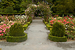 Walking path through rose garden in the Christchurch Botanic Garden, Christchurch, New Zealand