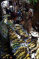 Women selling plantain at Yangambi market,  DR Congo, on Sunday, Dec. 7, 2008. Plantain is the most common form of banana in Congo and forms a staple part of people's diet throughout the region. For the most part it is boiled and then mashed to form a dish called Lituma.