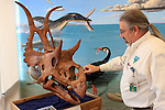 BLM Visitor Center on Hwy 89 near Big Water, Utah,<br /> Dinosaurs. Sea Monsters.