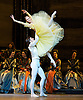 Swan Lake Bolshoi 29th July 2013