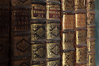 Detail of the books, housed in bookcases with Chinese motifs, lacquer and gilding by Manuel da Silva, in the Joanina Library, or Biblioteca Joanina, a Baroque library built 1717-28 by Gaspar Ferreira, part of the University of Coimbra General Library, in Coimbra, Portugal. The Casa da Livraria was built during the reign of King John V or Joao V, and consists of the Green Room, Red Room and Black Room, with 250,000 books dating from the 16th - 18th centuries. The library is part of the Faculty of Law and the University is housed in the buildings of the Royal Palace of Coimbra. The building is classified as a national monument and UNESCO World Heritage Site. Picture by Manuel Cohen