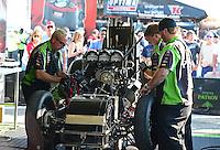 Sept. 23, 2012; Ennis, TX, USA: NHRA crew members work on the car of funny car driver Alexis DeJoria during the Fall Nationals at the Texas Motorplex. Mandatory Credit: Mark J. Rebilas-