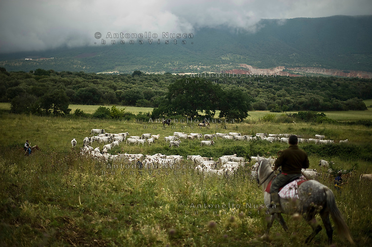 frosolone dating site Wwwitalyrevistedorg seeks to document italian's cultural heritage by creating an extensive photo archive of the day to day life of farmers and townspeople living at the turn of the 20th.