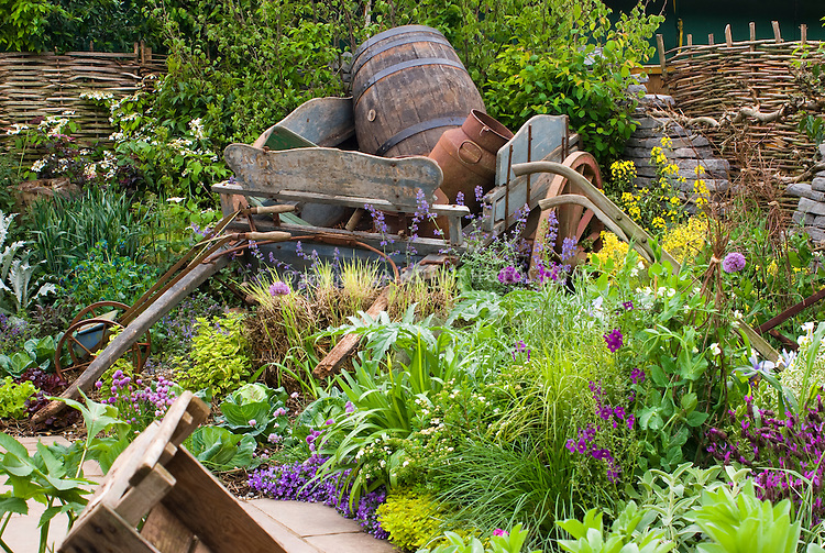 Herb garden design plants photograph rustic farm tractor a - Rustic flower gardens ...