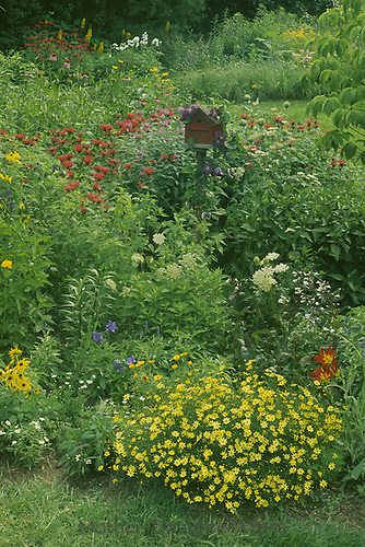 Birdhouse or birdbox from front made to look like antique red barn sitting amid wildflowers in garden