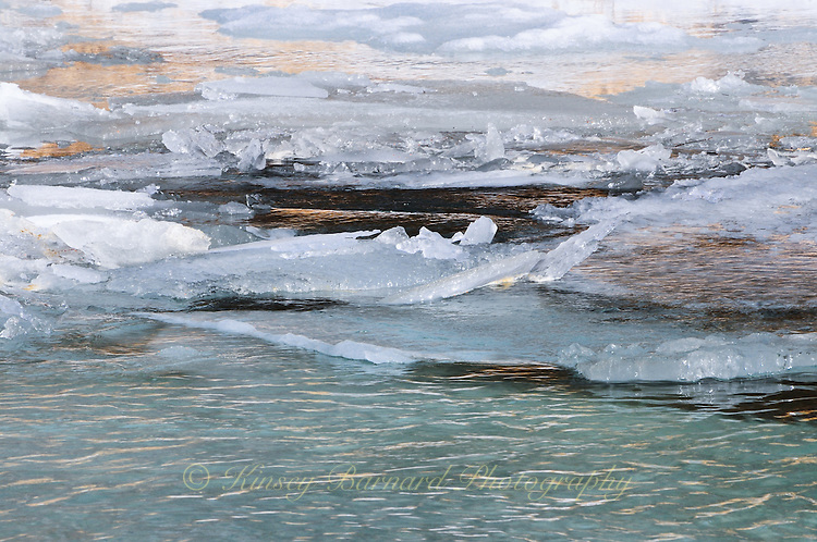 &quot;ICE JAM&quot;<br /> <br /> Ice jams on the Tobacco River in Montana. There is the most incredibly lovely sound as the ice breaks free and starts to move down river.