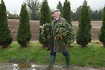 MISTLETOE & HOLLY AUCTION TENBURY WELLS WORCESTERSHIRE STOCK PHOTOGRAPHY PHOTOS ENGLAND