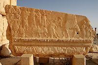 Carved relief on frieze entablature, depicting figures, camels and vinescrolls, sanctuary of Bel Marduk, chief Mesopotamian deity, built 3rd century BC - 1st century AD, Palmyra, Syria Picture by Manuel Cohen