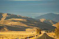 Road at dawn, Mackenzie country, New Zealand