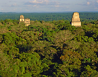 Temples I, II, and V, seen from Temple IV, Tikal National Park, Maya Biosphere Reserve, Guatemala