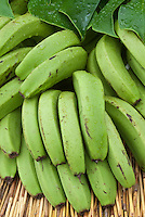 Bananas green