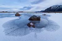 Frozen pond in winter, Gimsøy, Lofoten Islands, Norway