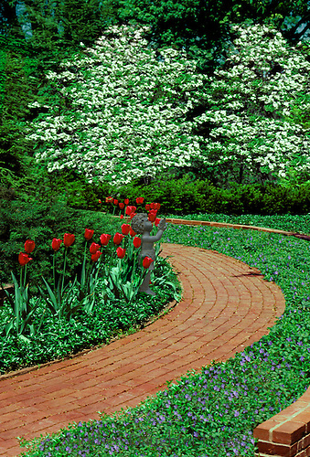 Formal brick pathway curves through blooming spring flowers- tulips, vinca minor, dogwood trees, and a cherub statue